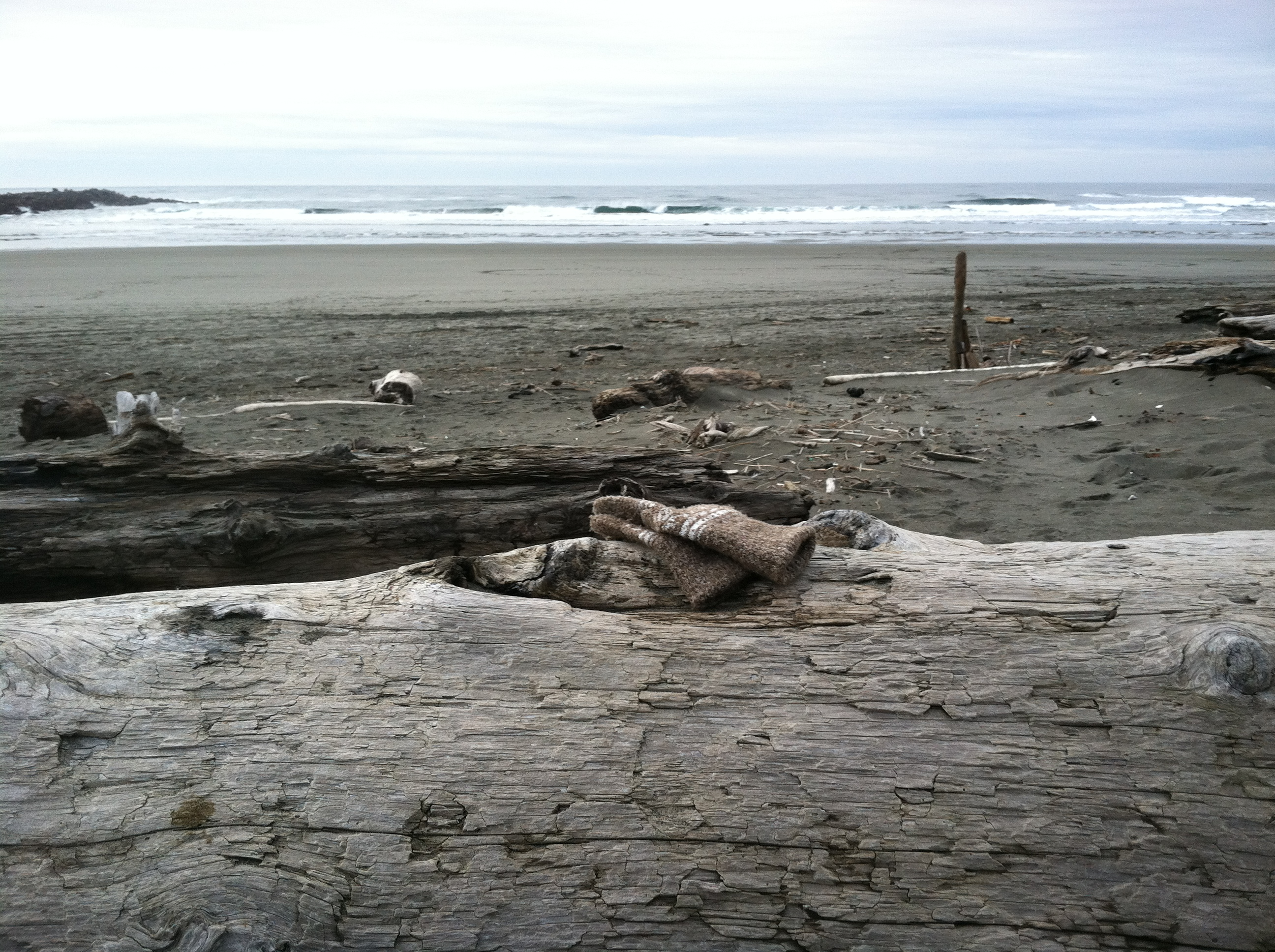 Sitting Log at the North Jetty in Ocean Shores, Washington