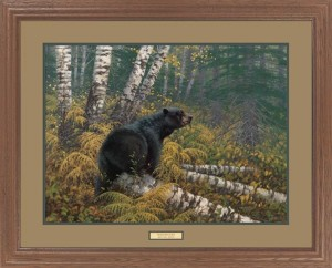 northwoods-bear-black-bear-framed-art-print-5331-XL