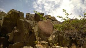 Petroglyph_SW
